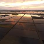 にいがたドローン空撮 春の水田 夕景(4K撮影映像)